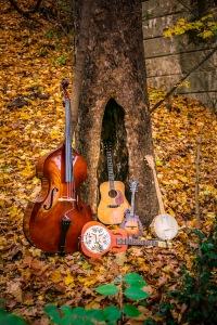instrumenttree_700